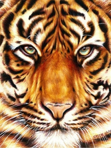 Diamond-Painting---TIGERBLICK