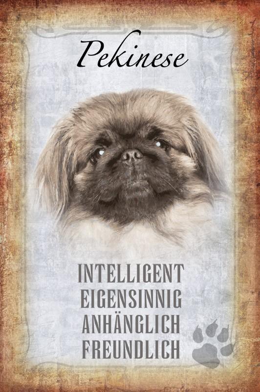 Blechschild Steckbrief Pekinese Hund