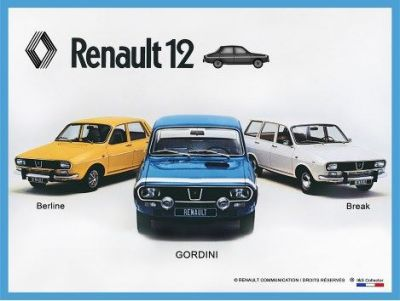 Blechschild 30 X 20 cm Renault 12 Gordini