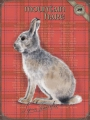 Blechschild - MOUNTAIN HARE - HASE - ROT