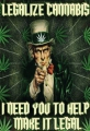 Blechschild - LEGALIZE CANNABIS - I NEED YOU TO HELP